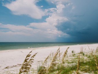 Cape San Blas Beach Front Homes